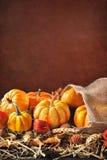Pumpkins jute bag Royalty Free Stock Photos