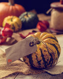 Pumpkins With Label. Thanksgiving table setting with pumpkins and autumn leaves stock image