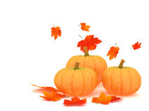 Pumpkins and leafs Stock Image