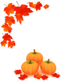 Pumpkins and leafs Stock Images