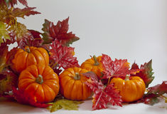 Pumpkins and Leaves Stock Photos