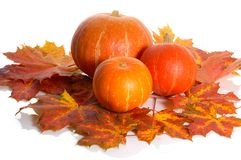 Pumpkins and leaves Stock Photo