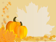 Pumpkins with leaves. Autumn background. Vector. Royalty Free Stock Image