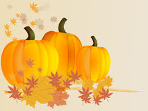 Pumpkins with leaves. Autumn background. Vector. Stock Images