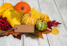 Pumpkins and leaves Royalty Free Stock Photography
