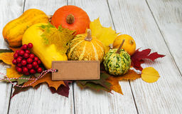 Pumpkins and leaves Stock Images