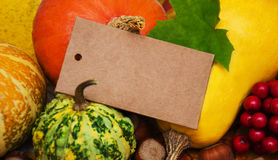 Pumpkins and leaves Stock Image
