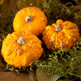 Pumpkins and leaves Royalty Free Stock Photos