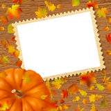Pumpkins and leaves on frame. Royalty Free Stock Photo