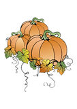 Pumpkins with leaves Royalty Free Stock Photo