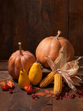 Pumpkins, leaves and physalis Royalty Free Stock Image