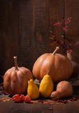 Pumpkins,   leaves and physalis Royalty Free Stock Photo