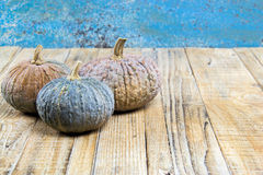 Pumpkins with leaves on wooden board stock photos