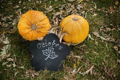 Pumpkins lie on the ground. haloween Royalty Free Stock Images