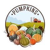 Pumpkins logo vector festival logo Stock Photography