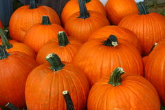 Pumpkins Stock Photos