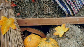 Pumpkins lying in the window for Halloween celebrations. The trolley stands at the exhibition, with pumpkins and other vegetables. Beautiful window dressing stock footage