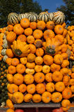 Pumpkins. Many orange pumpkins side by side and one above the other Royalty Free Stock Photo