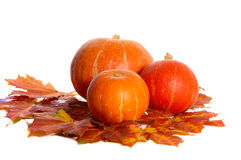 Pumpkins between maple leves Royalty Free Stock Images