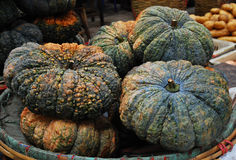 Pumpkins in the market. The pumpkins on farmers market Stock Image