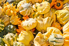 Pumpkins on a market Royalty Free Stock Photo
