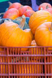 Pumpkins at the Market. Colorful pumpkins and gourds in a crate at a Farmer's Market Royalty Free Stock Images