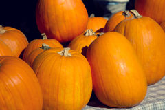 Pumpkins on the market Stock Images