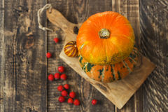 Pumpkins, melon and red berries Stock Photos
