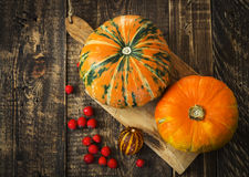 Pumpkins, melon and red berries Stock Photography