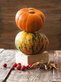 Pumpkins, melon and red berries Royalty Free Stock Photo