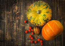 Pumpkins, melon and red berries Stock Photo
