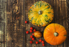 Pumpkins, melon and red berries Royalty Free Stock Photos