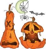 Pumpkins Moon Bat and Spider Royalty Free Stock Image