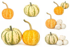 Pumpkins with mushrooms over white background Royalty Free Stock Images