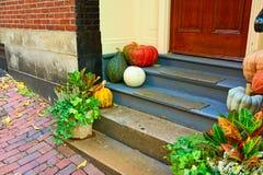 Pumpkins near the door for Halloween royalty free stock photo