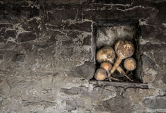 Pumpkins in niche. With contrast stonewall royalty free stock photo