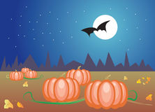 Pumpkins at night. A Vector illustration of pumpkins at autumn night with the full moon Stock Illustration