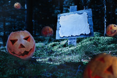 Pumpkins at night in forest Royalty Free Stock Image