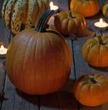 Pumpkins at Night Stock Image