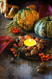 Pumpkins, nuts and candle Royalty Free Stock Photos