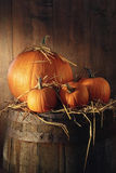 Pumpkins on old barrel Stock Images