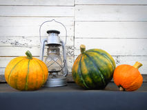 Pumpkins with old lamp still life. Three thanksgiving pumpkins with old vintage lamp on white background Royalty Free Stock Photo
