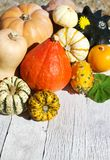 Pumpkins on old wood background. Thanksgiving Pumpkins on white old wood background stock images
