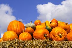 Pumpkins On Bales Of Straw (hay) Stock Photos