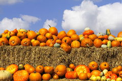 Free Pumpkins On Bales Of Straw (hay) Stock Image - 13901621