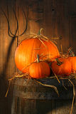 Pumpkins On Wine Barrel Royalty Free Stock Photos
