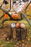 Pumpkins and other decor items for Halloween Royalty Free Stock Photography