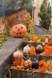 Pumpkins and other decor items for Halloween Stock Image