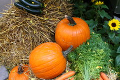Pumpkins and other Vegetables on Hay with Flowers in the Background Stock Photo
