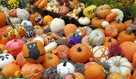 Pumpkins painted by Halloween Royalty Free Stock Photos